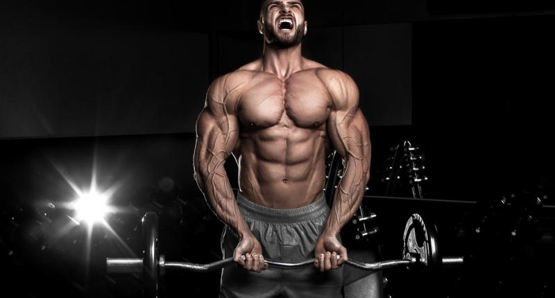 Das PITT-Force Training – Mehr Power – Muskeln und Effizienz