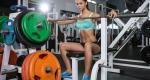Der Große Gewichte und Hantelstangen Guide – Der Ratgeber für freie Gewichte