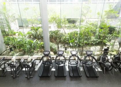Jedes achte Mitglied verschwendet 36,32 € pro Monat im Fitnessstudio