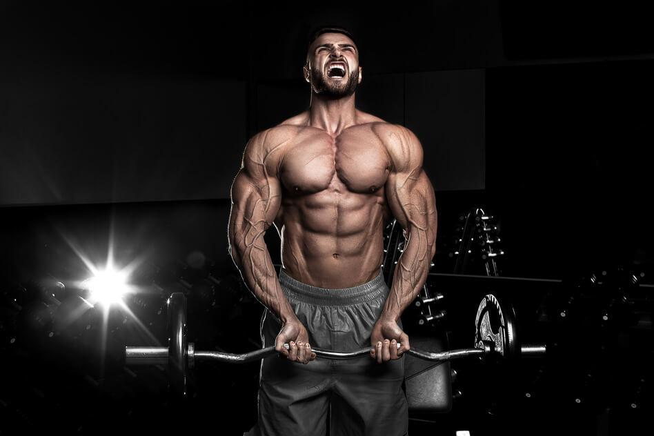 PIIT_FORCE_TRAINING_bodybuilding
