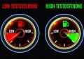 Top 9 Testo Booster - So kannst du dein Testosteron ganz natürlich erhöhen