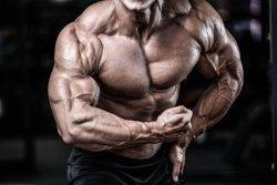 Die 50 besten Bodybuilding Tipps – Training wie ein Profi